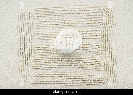 Coral on raked sand, close-up - Stock Photo