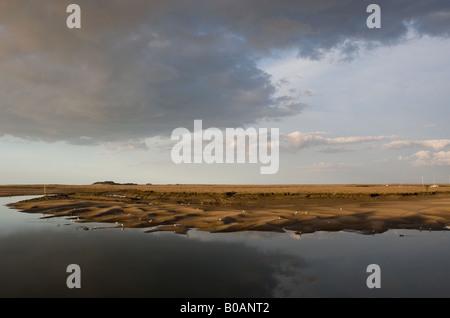sunset over the marshes - Stock Photo