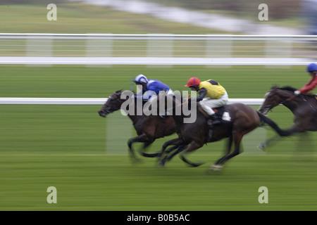Horseracing at Ascot Racecourse Berkshire England United Kingdom - Stock Photo