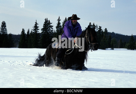 Gol horse back riding in the snow - Stock Photo