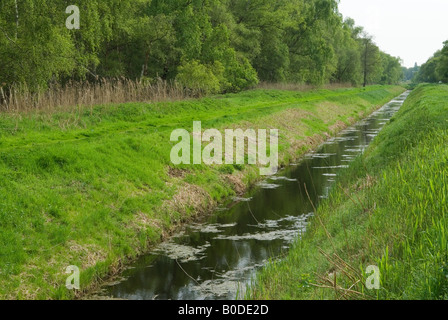 Holme Fen dyke drainage ditch Cambridgeshire Lowest point in Britain Nature Reserve to left and right of dyke HOMER - Stock Photo