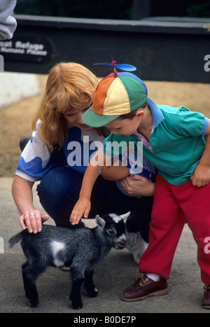 YOUNG BOY PETS BABY GOAT AT THE MINNESOTA ZOO IN APPLE VALLEY, MINNESOTA.  SUMMER. - Stock Photo