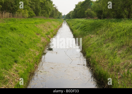 Holme Fen dyke drainage ditch Cambridgeshire UK  Lowest point in Britain Nature Reserve to left and right of dyke - Stock Photo