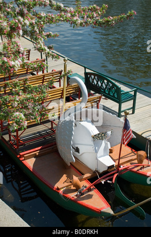 Looking down at the famous swan boats of the public gardens in Boston Ma. - Stock Photo