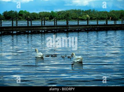 inland fresh water lake - Stock Photo