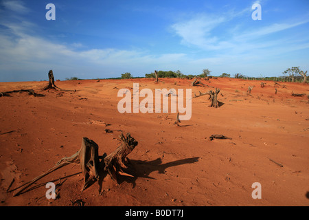 Desert-like landscapes from Sarigua national park in the Herrrera province in Republic of Panama - Stock Photo