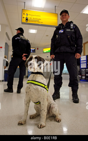 Police officers with drug sniffer dog on duty in Aberdeen airport, Scotland, UK - Stock Photo