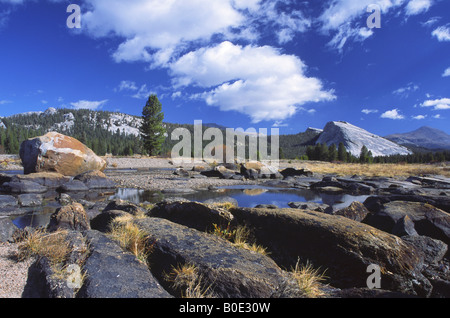 Glacially polished boulders in Yosemite National Park, California