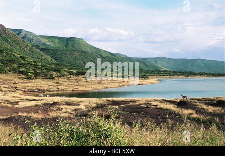 Northern end of Lake Bogoria Great Rift Valley Kenya East Africa - Stock Photo