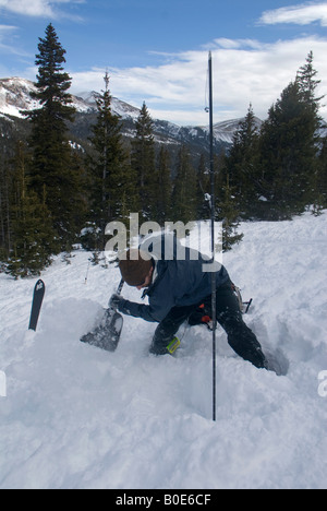 Avalanche recovery- man digging in the snow next to a probe pole, searching for buried victim - Stock Photo