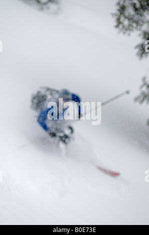 Telemark skiing in the backcountry Grizzly Shoulder, Rogers Pass, British Columbia, Canada - Stock Photo