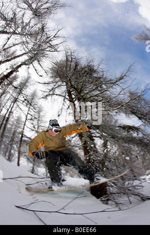 Snowboarder riding through trees off piste. - Stock Photo