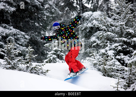 Snowboarder riding the trees in St Foy de Tarrentaise. - Stock Photo