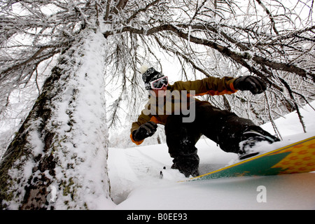 Snowboarder off piste riding through the trees - Stock Photo