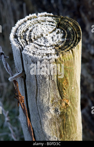 Hoar frost covered wooden barbed wire fence post Oxfordshire England United Kingdom - Stock Photo