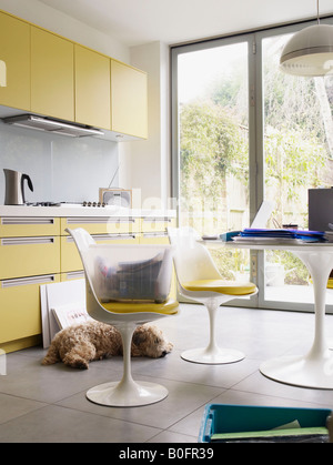 Interior of kitchen with lots of files - Stock Photo