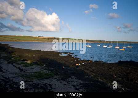 View from Feock over Carrick Roads to Roseland Peninsular - Stock Photo