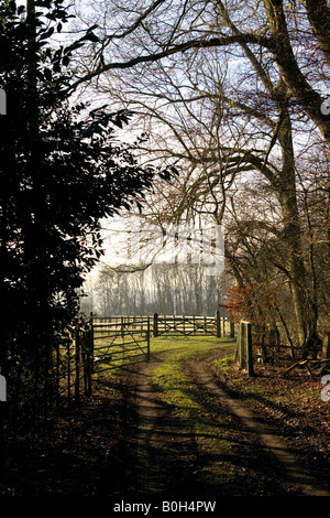 A rural scene in the countryside near Medmenham in Buckinghamshire, England. - Stock Photo