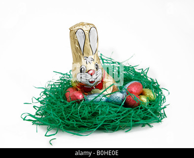 Easter bunny and chocolate eggs in a nest - Stock Photo