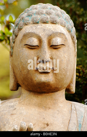 Buddha head, Botanical Gardens, Erlangen, Middle Franconia, Bavaria, Germany, Europe - Stock Photo