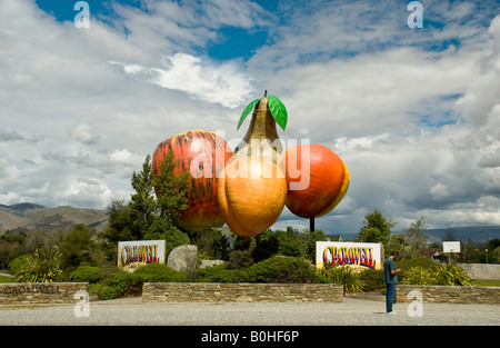 Fruit sign at Cromwell New Zealand - Stock Photo