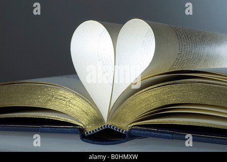 Open book, folded pages in the shape of a heart - Stock Photo