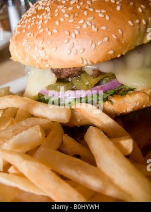 Cheeseburger and french fries on plate, Washington DC, USA - Stock Photo