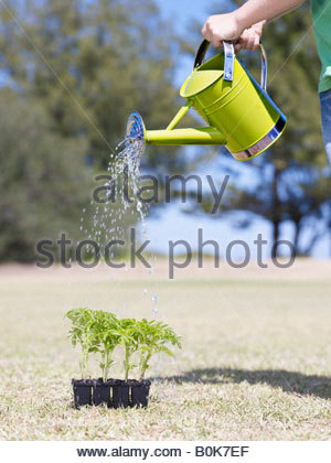 Young boy outdoors watering four small plants - Stock Photo