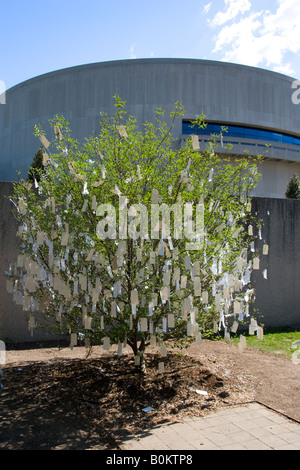 Wish Tree for Washington DC by Yoko Ono at The Hirshhorn Museum and Sculpture Garden USA