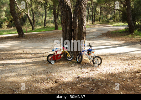 Two small kids bikes with training wheels parked below a tree in the forest. - Stock Photo