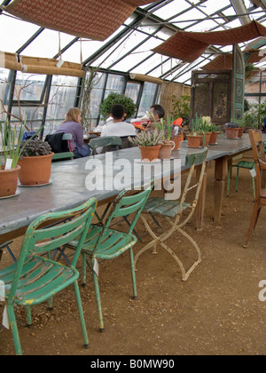 Table inside the greenhouse cafe (not restaurant) at Petersham Nurseries, Petersham. Richmond Upon Thames. UK - Stock Photo