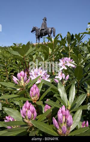 Duke of Wellington Statue Round Hill Aldershot Hampshire Rhododendron Foreground - Stock Photo