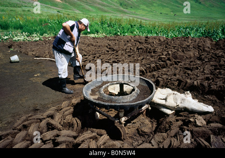 June 24, 2006 - Nomad cutting dried dung used for heating yurts in the Kyrgyz mountains near the town of Kazarman. - Stock Photo