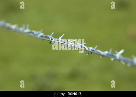 barbed wire against a green field background - Stock Photo