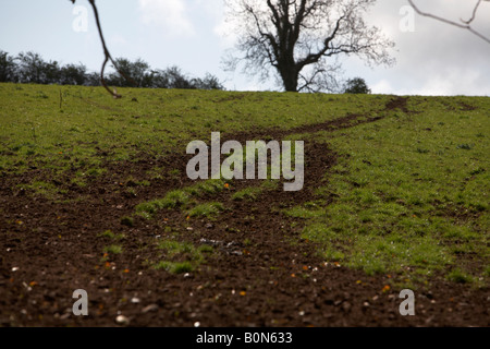 old vehicle and animal tracks cut into the earth uphill across a field in county down - Stock Photo