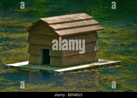 Floating wooden duck house on the pond View from the side. Close up - Stock Photo