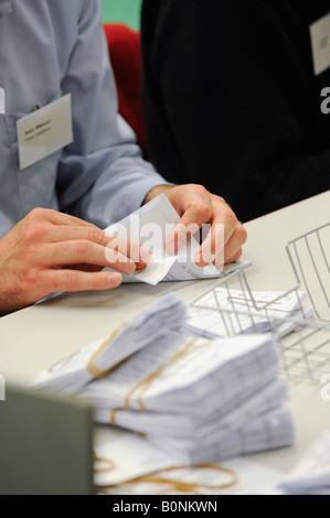 Voting slips are verified before being counted on count night at Hastings local election count. Picture by Jim Holden. - Stock Photo