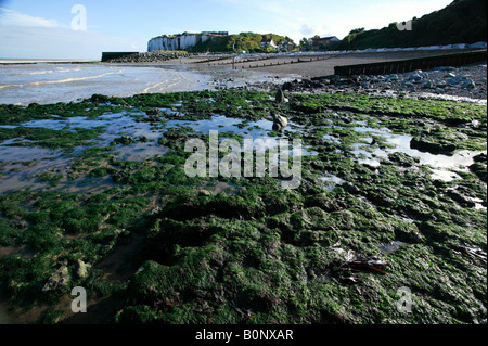 Panoramic wide-angle view of Oldstairs Bay at low tide  on a glorious summers day - Stock Photo