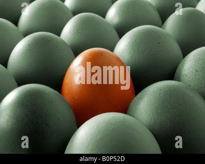 Close up of a grey eggs with one brown egg. - Stock Photo