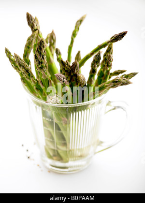 tender young shoots of Asparagus spears in jug of water against white background - Stock Photo