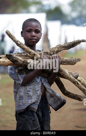 Kenyan refugee boy withe fire wood (internally displaced people = IDPs) in the refugee camp BURNT FOREST, Eldoret - Stock Photo
