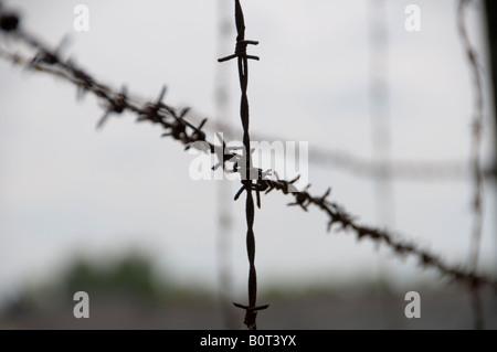 Schön German Barbed Wire Fence Zeitgenössisch - Die Besten ...