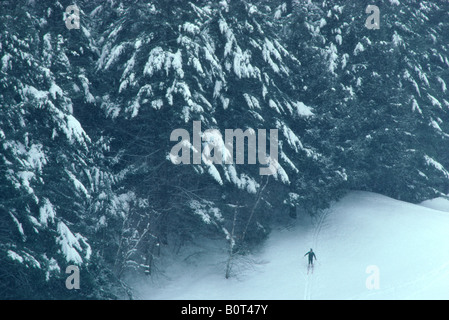 'Cross Country' skier at 'Dartmouth College' Hanover NH - Stock Photo