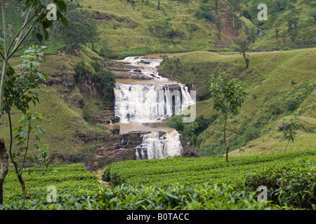 St Clair waterfall and tea estate near Talawakele viewed from the road to Nuwara Eliya, Sri Lanka - Stock Photo