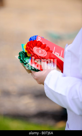 Heathfield & District Agricultural Show. Crowds flock to the county show held in May. Prize rosettes waiting to - Stock Photo