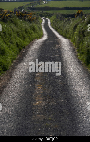 small narrow single track road leading off into countryside in county sligo republic of ireland - Stock Photo