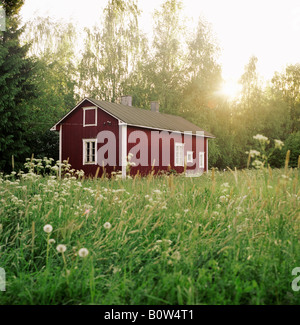 House in the forest Finland - Stock Photo