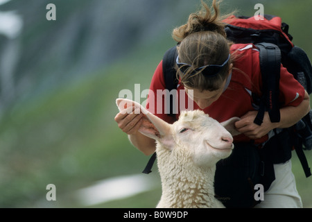 Woman playing with a happily grinning sheep, image manipulation - Stock Photo