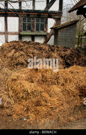 Dung heap, pile of manure in front of a historical farmhouse, Hessenpark, Neu-Anspach, Taunus, Hesse, Germany - Stock Photo