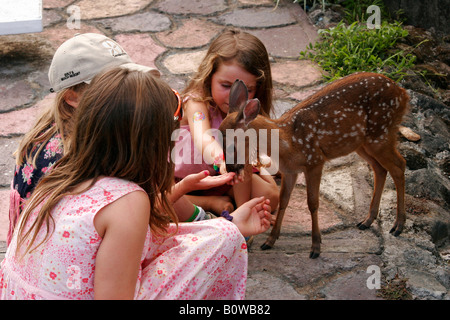 Children playing with a tame fawn, deer, Ometepe Island, Lake Nicaragua, Nicaragua, Central America - Stock Photo